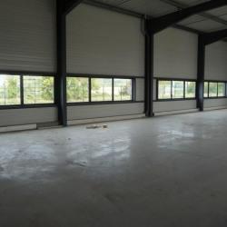 Location Local d'activités Escalquens 3000 m²