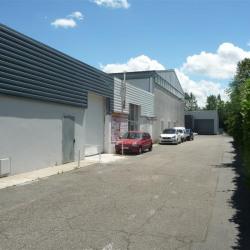 Location Local d'activités Toulouse 280 m²