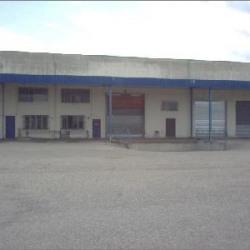 Vente Local d'activités Saint-Bonnet-de-Mure 1940 m²