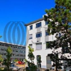 Location Bureau Lyon 9ème 249 m²