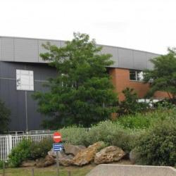 Location Local d'activités Saint-Michel-sur-Orge 2400 m²