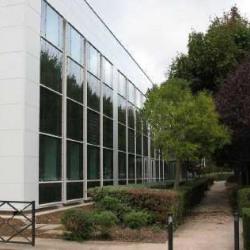 Location Bureau Villepinte 174 m²
