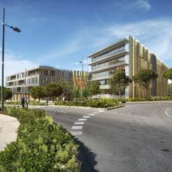 Vente Bureau Montpellier 830 m²