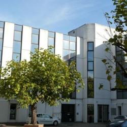 Location Bureau Lyon 7ème 602 m²