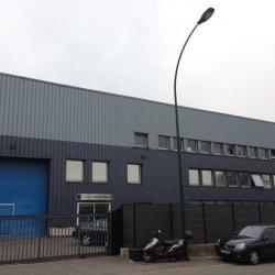Vente Local d'activités Plaisir 1500 m²