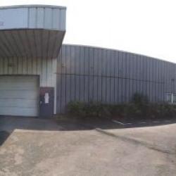 Location Local d'activités Villeneuve-d'Ascq (59491)
