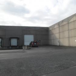 Location Entrepôt Linselles 4200 m²