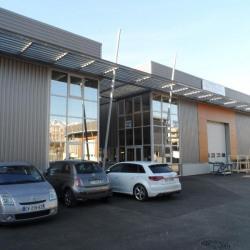 Vente Local d'activités Saint-Martin-d'Hères 890 m²