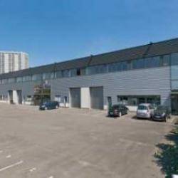 Location Local d'activités Saint-Denis 663 m²