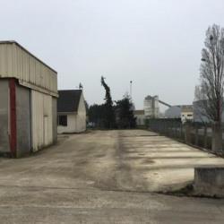 Vente Local d'activités Mitry-Mory 576 m²