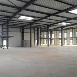 Location Local d'activités Corbas 1200 m²
