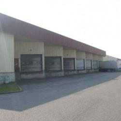 Location Local d'activités Corbas 500 m²