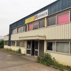 Vente Local d'activités Villebon-sur-Yvette 1374 m²