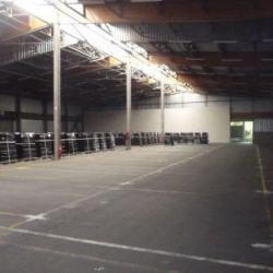 Location Entrepôt Noyelles-lès-Seclin 9664 m²