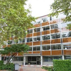 Location Bureau Villeurbanne 236 m²