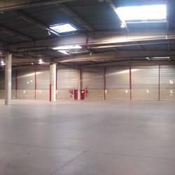 Location Entrepôt Saint-Denis 3153 m²