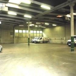 Location Local d'activités Torcy 1145 m²
