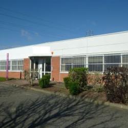 Vente Local d'activités Ramonville-Saint-Agne 512 m²