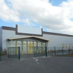 Location Local d'activités Saint-Alban 840 m²