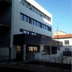 Location Bureau Lyon 7ème 865 m²
