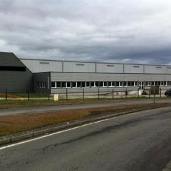 Vente Local d'activités Ruffec 4800 m²