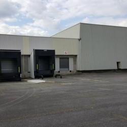 Location Entrepôt Croissy-Beaubourg (77183)