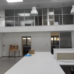Vente Bureau Launaguet 544 m²
