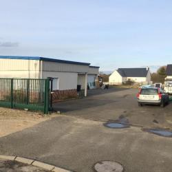 Vente Local d'activités Cléry-Saint-André 500 m²