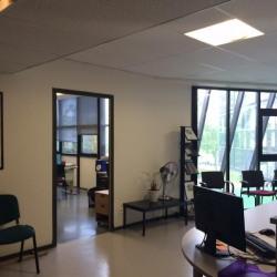 Location Bureau Champigny-sur-Marne 559 m²