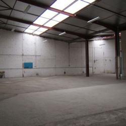Location Entrepôt Vendargues 770 m²