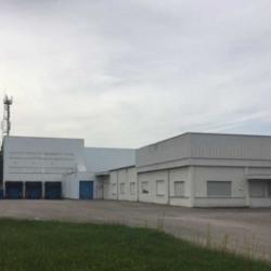 Location Local d'activités Hœrdt 6216 m²