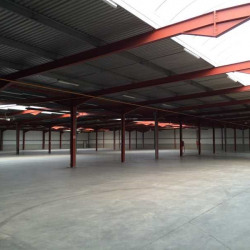 Location Entrepôt Halluin 6250 m²
