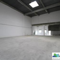 Location Local d'activités Lognes 284 m²