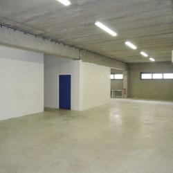 Location Local d'activités Bussy-Saint-Georges 350 m²