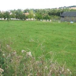 Vente Terrain Condé-sur-Noireau (14110)