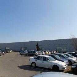 Location Local d'activités Toulouse 800 m²