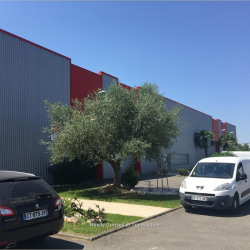 Location Local d'activités / Entrepôt Cugnaux