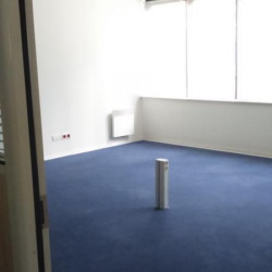 Location Local commercial Mulhouse 244 m²