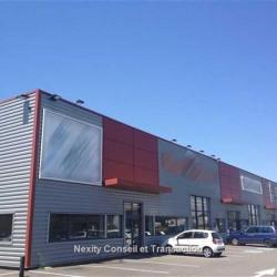 Location Local commercial Muret (31600)
