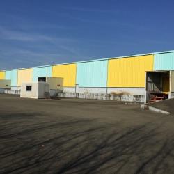 Location Entrepôt Saint-Étienne-du-Rouvray 4200 m²