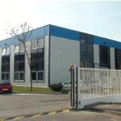 Location Local d'activités Vitry-sur-Seine 270 m²
