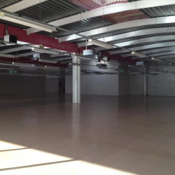 Location Local commercial Lagny-sur-Marne 1665 m²