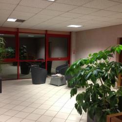 Location Bureau Seynod 270 m²