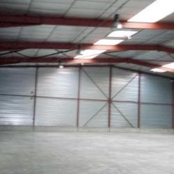 Location Local d'activités Ballainvilliers 1095 m²