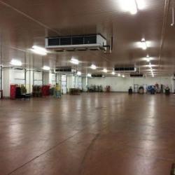 Vente Local d'activités Saint-Loubès 17008 m²