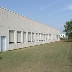 Location Local d'activités Échirolles 1010 m²