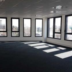Vente Bureau Vaulx-en-Velin 1260 m²