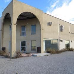 Location Local d'activités Vendargues 770 m²