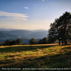 Terrain  de 1000 m²  Poinson-Lès-Nogent  (52800)