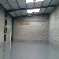 Location Entrepôt Décines-Charpieu 352 m²